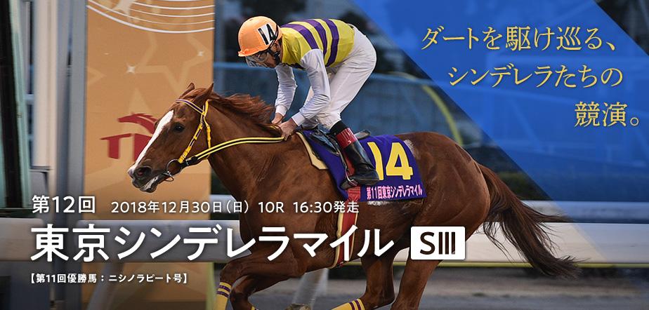 東京シンデレラマイル(SIII)