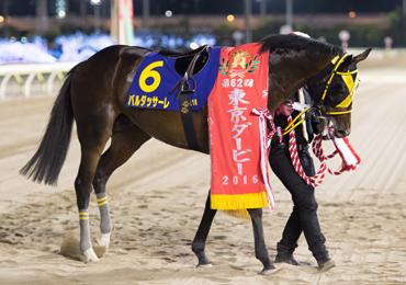 第62回 東京ダービー(SI) | 重賞レース | レースと日程 | 東京シティ ...